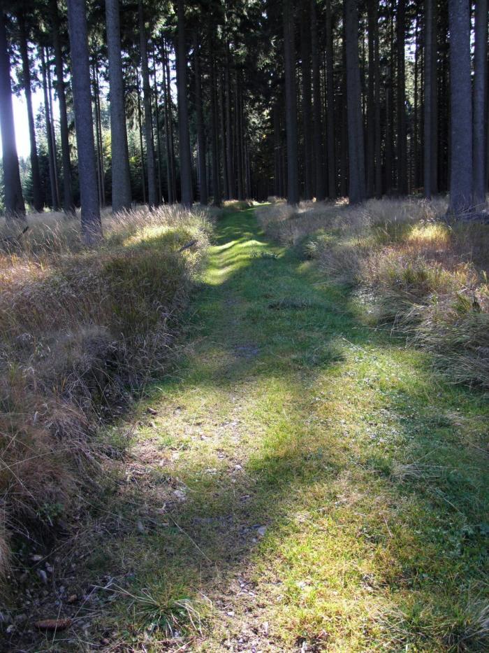 cachnov les