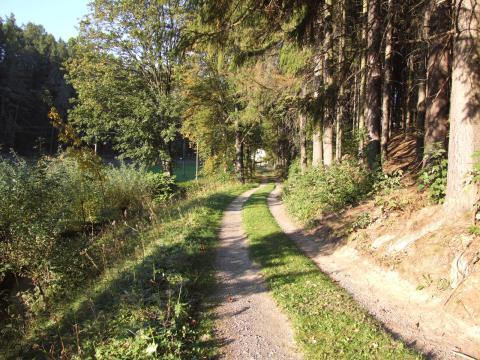 Cesta do Novych Hradu z Roudne