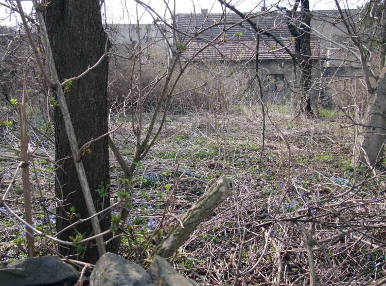 jaro u sousedu 2009