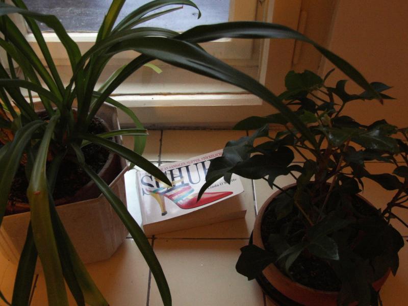 kniha na okne u zuzi