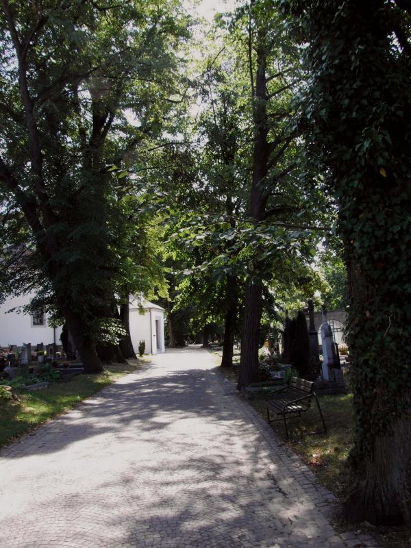 litomysl hrbitov