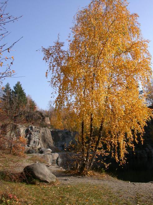Lom Miksov 2