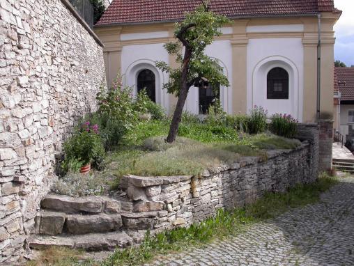 Luze synagoga