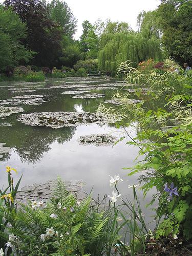 Monet garden2
