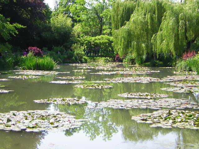 Monet garden1