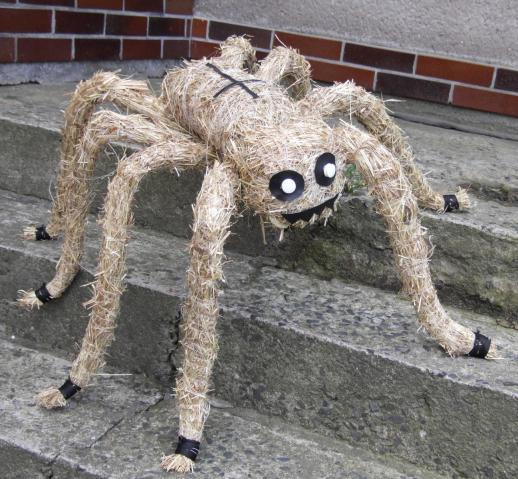 pavouk pro stesti