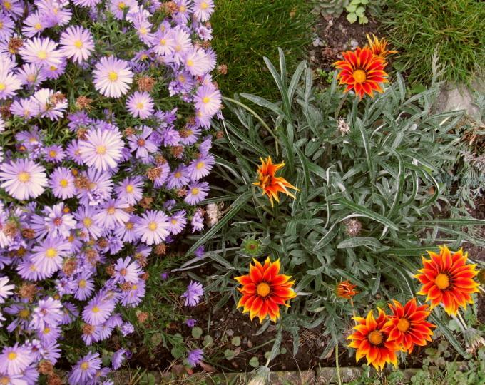 podzim zahrada 2