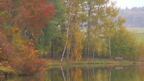 podzimni alchymie 2