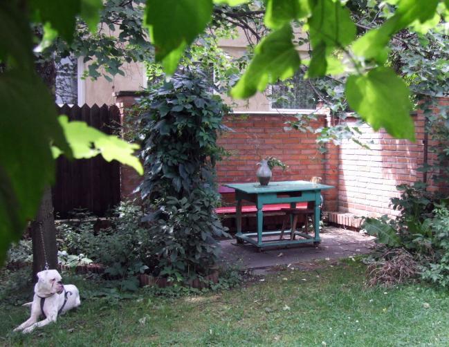 port zahrada 1