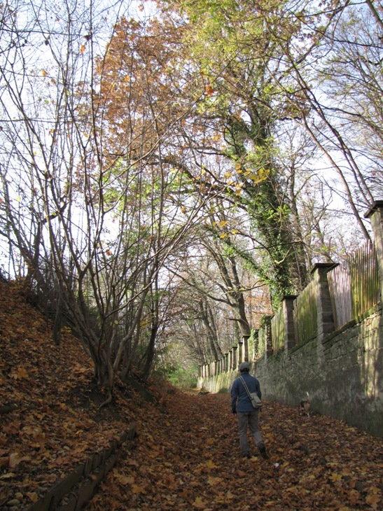 slatinany_podzim2009_8