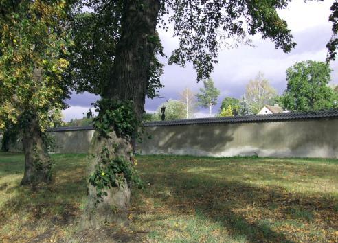 za hrbitovni zdi