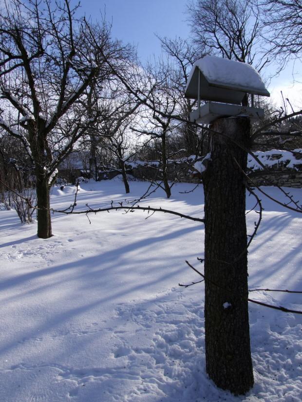zah zuzi zima 09 1