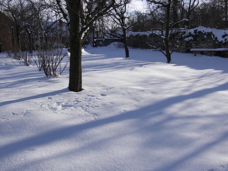 zah zuzi zima 09 2