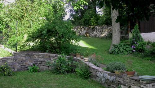 zahrada 11