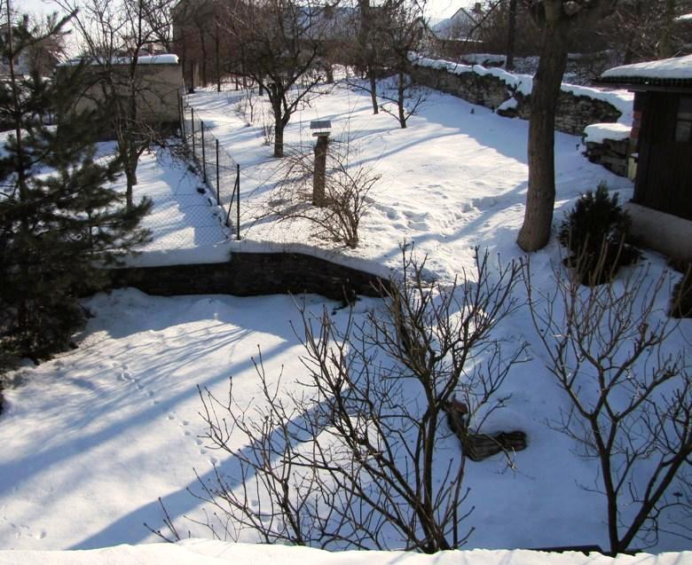 zahrada zima_jaro 2010A.J