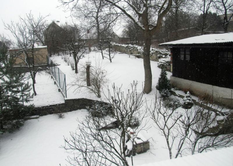 zimaa 2009