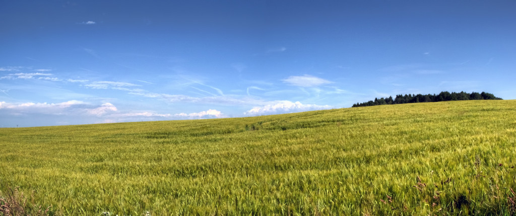 IMG_4013_4_5_tonemapped_panorama