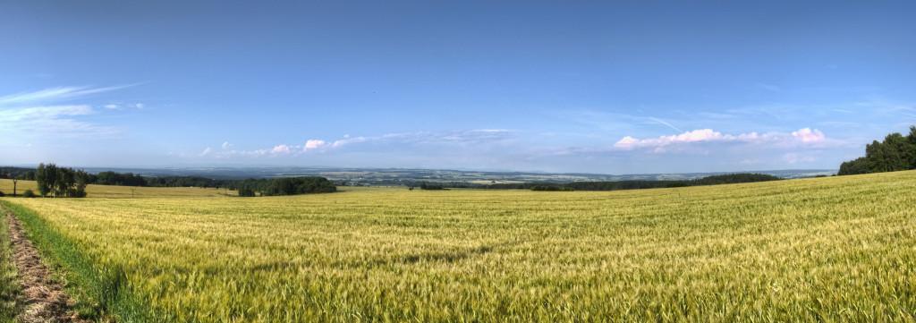 IMG_4019_20_21_tonemapped_panorama