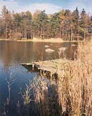 lesni-rybniky01