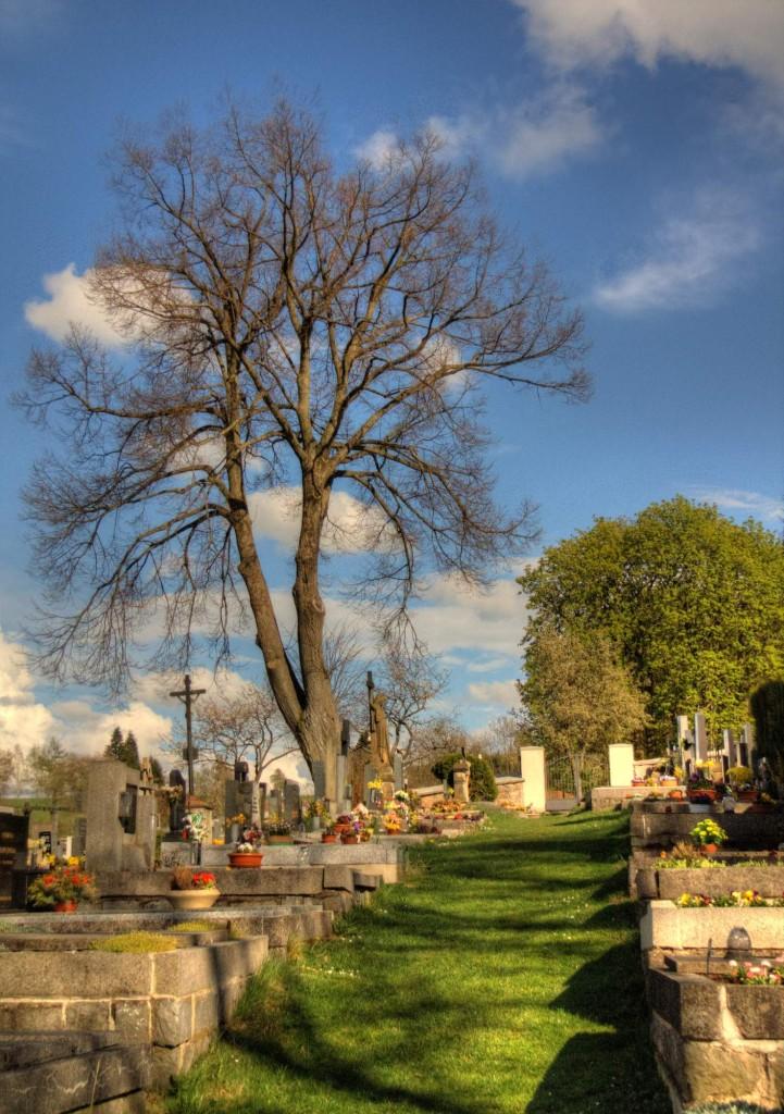 Modletín hřbitov 13