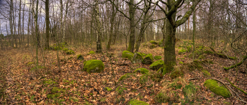 Set103from__DSC8743_panorama