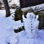 Sněhulák komp
